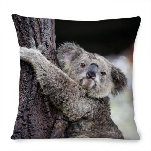 Koala Bären Kissenbezug 40.6x40.6cm 40cm Süß Mutter Baby Blass Foto Wild