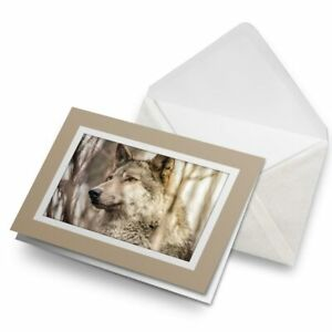 Greetings-Card-Biege-Wild-Grey-Wolf-Wolves-Dog-Dogs-Animal-24447