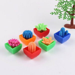 Grow in Water Toys Expansion Plant Novelty Magic Beautiful EVA Absorption