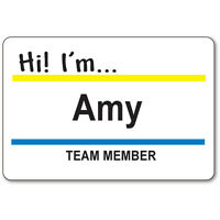 Amy Team Member Badge & Button Halloween Costume Superstore Tv Show Safety Pin