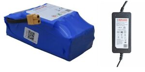 Kit Alimentatore Caricatore Hoverboard + Batteria Per Smart Balance Monopattino