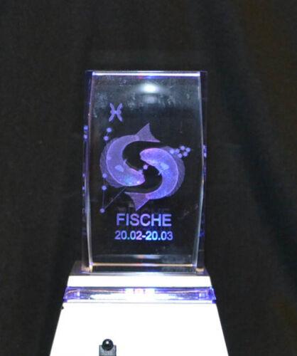 3D GLAS HOLOGRAMM  MESSENEUHEIT FISCHE  MAßE 4,8 X 4,8 cm X 7,7 cm