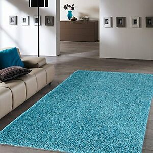 Image Is Loading Soft Cozy Turquoise Blue Color Shag Rug Contemporary