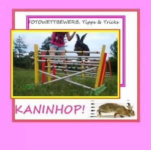Kanin-Hop-Kaninhop-Kaninchensport-Buch-Einfuehrung-Fotos-Geliebte-Tiere-GT