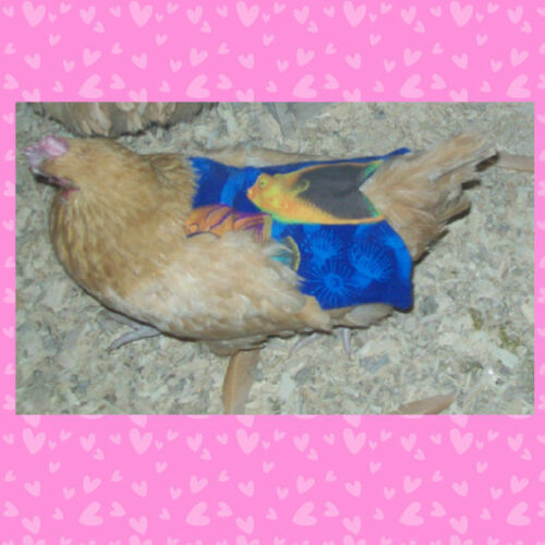 1 SUPER WIDE /& LONG CHICKEN SADDLE APRON HEN FEATHER PROTECTION HATCHING EGGS