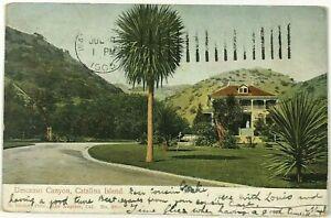 Postcard Catalina Island CA House View Descanso Canyon California 1905 Undivided