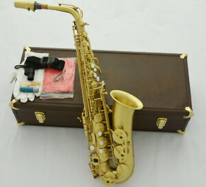 Professional-54-Reference-Alto-Saxophone-Brushed-Yellow-Brass-Sax-Leather-Case