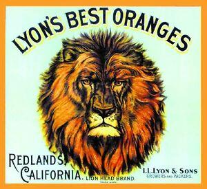 Redlands Lyons Best Lion Head 02 Orange Citrus Fruit Crate Label
