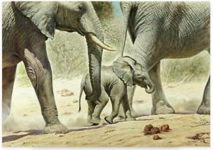 Poster-Kunstdruck-GO-BABY-GO-Renato-Casaro-Elefant-Elefanten-Deko-Bild-100x70
