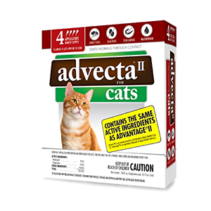 New 4 Month Supply Flea Treatment for Cats over 9 Lbs Kill Fleas Eggs and Larvae
