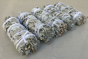 White-Sage-Smudge-Stick-4-034-to-5-034-Wands-House-Cleansing-Negativity-LOT-OF-5