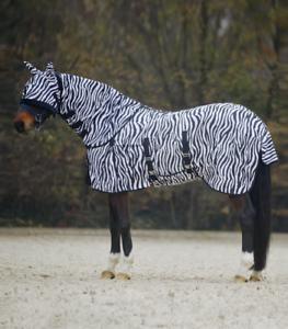 Fliegendecke-Zebra