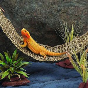 image is loading bearded dragon lizard lounger large reptile toys hammock  bearded dragon lizard lounger large reptile toys hammock swing for      rh   ebay