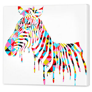 Colourful-African-Zebra-Canvas-Wall-Art-Print-Framed-Ready-to-Hang-Animal-Prints