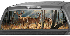 WHITETAIL DEER Window Graphic Tint Decal Sticker Truck Jeep SUV hunting buck