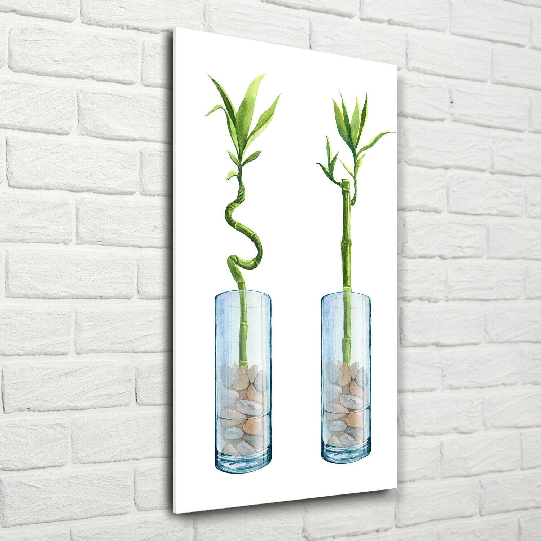 Wand-Bild Kunstdruck aus Acryl-Glas Hochformat 70x140 Bambus Topf