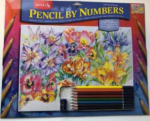 Reeves Malen nach Zahlen mit Buntstiften Blumen kreativ pencil by numbers NEU