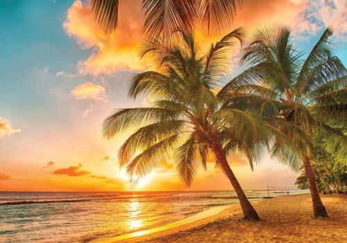 Vlies Fototapete Strand Meer Palmen Karbik Sonnenuntergang Tapete Wandtapete 19