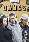 Gangs by Lori Hile (Paperback, 2013)