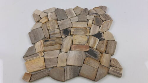 Petrified Wood Mosaic Tiles  for walls or floors in bathroom or shower