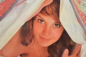 Vintage-300-Piezas-Playboy-Cubierta-Rompecabezas-Puzle-Pinup-Arte-Noviembre-1971