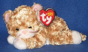 TY TABBLES the CAT BEANIE BABY - MINT with MINT TAGS