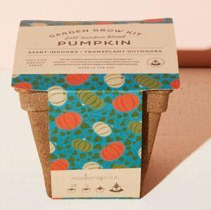 Modern Sprout Garden Grow Drop-In Kit - Pumpkin - Set of 2