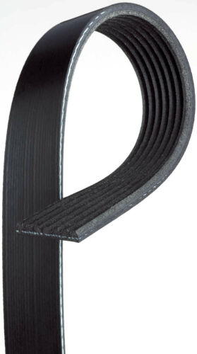 Serpentine Belt-Premium OE Micro-V Belt Gates K070655 fits 07-10 BMW X5 4.8L-V8