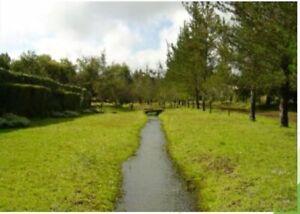 se vende rancho entre queretaro y michoacan de 430 hectareas en 135millones de pesos