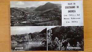 Cartolina-Postcard-Saluti-da-CASTAGNO-DI-ANDREA-e-Monte-Falterona-viaggiata-039-64