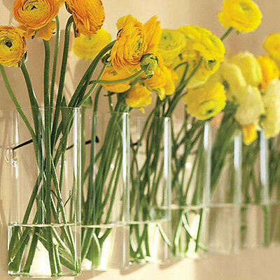 Wall Hanging Crystal Glass Flower Vase Planter Terrarium Container Flower Pot