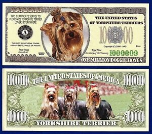 1-Yorkshire Terrier Dog Dollar Bill   Collectible FAKE-Funny  MONEY Note-P1