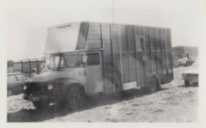 TRADER LORRY PHOTO PHOTOGRAPH BEDFORD J CLASSIC HORSEBOX TRUCK PICTURE WRD383.