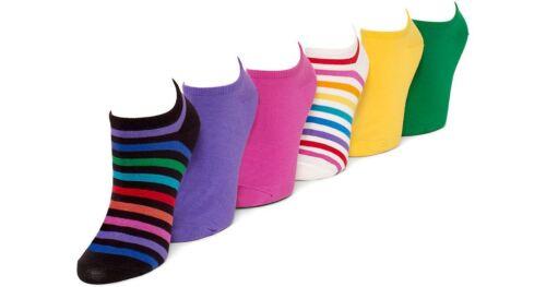 Hue 6 Piar Socks Hue Liner Socks No Show Cotton Liner Socks One Size
