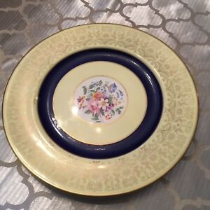 Johnson-Bros-Pareek-Plate-Yellow-With-Cobalt-Ring-10-Inch