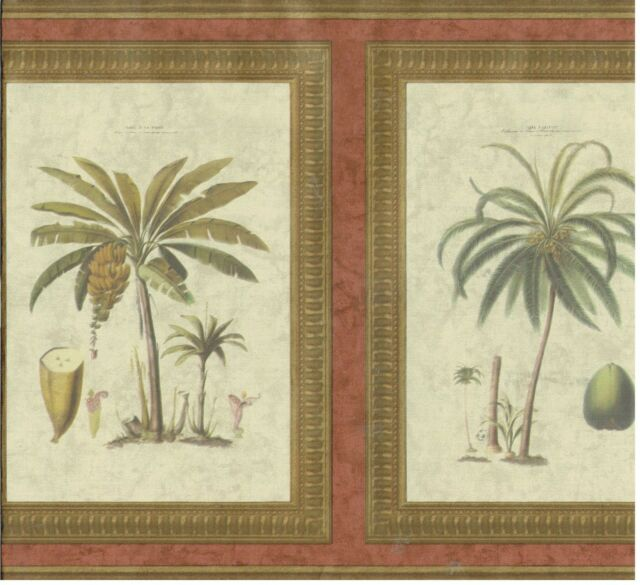 PALM TREES IN FRAMES COCONUTS BANNANAS AND OTHER FRUITS Wallpaper bordeR Decor