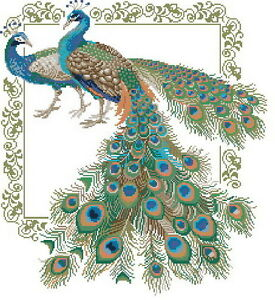14-count-aida-needlepoint-cross-stitch-peacock-kit-with-colorful-chart-D042