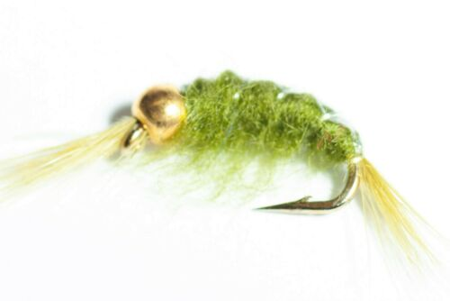 Bead-Head Scud Fly 6 Pack Grey Olive /& Tan