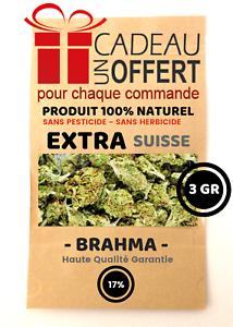 BRAHMA - 3 Gr - CBD