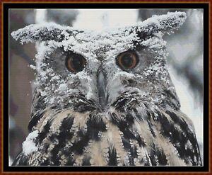 EAGLE-OWL-cross-stitch-pattern-PDF-point-de-croix