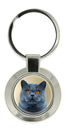 British Shorthair Cat Key Ring