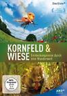 Kornfeld & Wiese - Entdeckungsreise durch eine Wunderwelt (2013)
