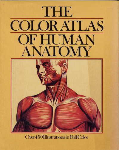 Color Atlas Of Human Anatomy By Vanio Vannini And Giuliano Pogliani