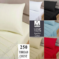 250 THREAD COUNT 100% EGYPTIAN COTTON FLAT SHEETS  SINGLE DOUBLE KING S.KING