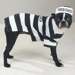 Casual-Canine-PRISONER-POOCH-Dog-Pet-Halloween-Costume-XS-S-M-L-XL