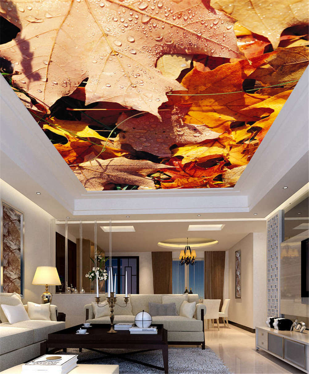 Rich Visible Picture 3D Ceiling Mural Full Wall Photo Wallpaper Print Home Decor
