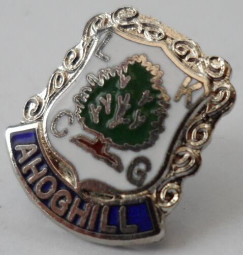 0190 Ahoghill Town Northern Ireland Crest Small Pin Badge