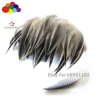 Wholesale 10-100pcs natural pheasant feather a variety of styles to choose