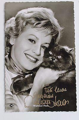 "27143 Foto Ak Original Film Autogramm Waltraut Haas Mit Katze In ""paprika"" 1959 Professionelles Design"
