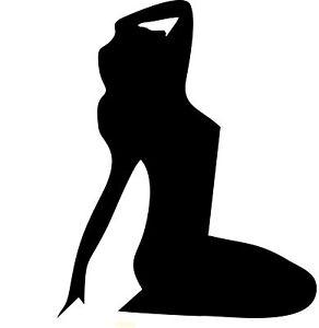 Sexy-Lady-Silhouette-Pole-Dancer-Laptop-Vinyl-Car-Camper-truck-Sticker-SM16-11